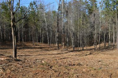 LOT 1 STOKES DRIVE, Seneca, SC 29672 - Photo 2