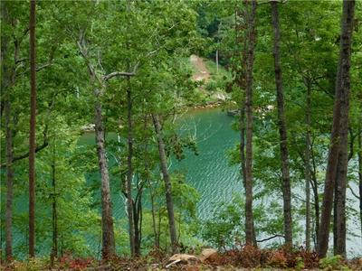 LOT 3 BENTWOOD WAY, Salem, SC 29676 - Photo 2
