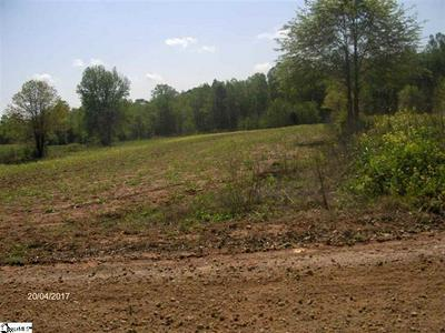 1120 OLD DACUSVILLE RD, Easley, SC 29640 - Photo 2