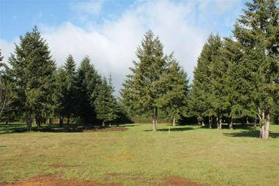 2513 S KINGS VALLEY HWY, Dallas, OR 97338 - Photo 2