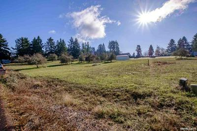 LAKE HILL (LOT #1917) LN, Sweet Home, OR 97345 - Photo 2