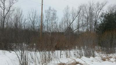PARCEL G WEAVER ROAD (5.55 AC), Fairview, MI 48621 - Photo 1