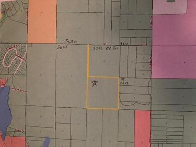 DB TRAIL 41.1 ACRES, Bellaire, MI 49615 - Photo 2