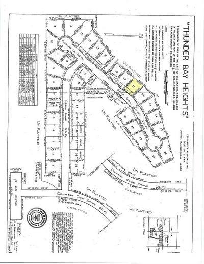 15200 GOLFVIEW CT LOT 21, Hillman, MI 49746 - Photo 2