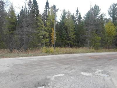 0 W NORTH ROAD, Eckerman, MI 49728 - Photo 2