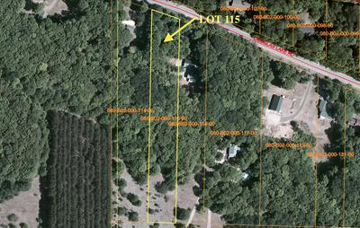 DOUGLAS LAKE ROAD, Pellston, MI 49769 - Photo 2