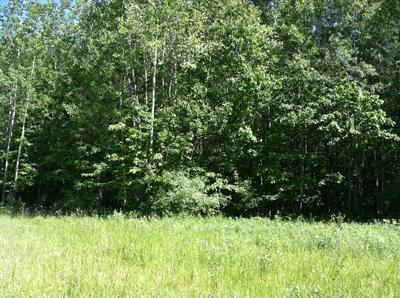 FOREST HILLS DRIVE, Spruce, MI 48762 - Photo 1