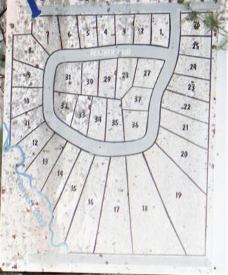 XXX INDIAN OAKS LOT 33, Prudenville, MI 48651 - Photo 2