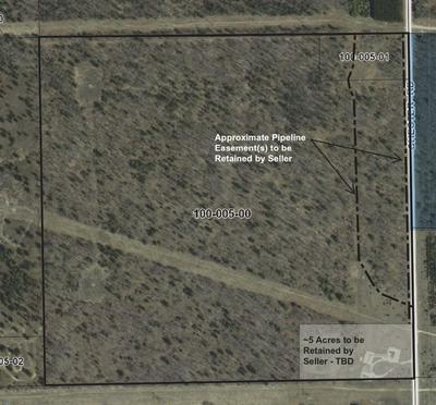 CHESTER ROAD (125 ACRES), Gaylord, MI 49735 - Photo 2