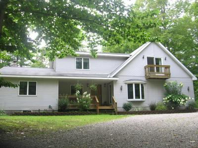 10150 HARRISON RD, Herron, MI 49744 - Photo 1