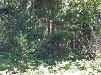 FOREST HILLS DRIVE, Spruce, MI 48762 - Photo 2