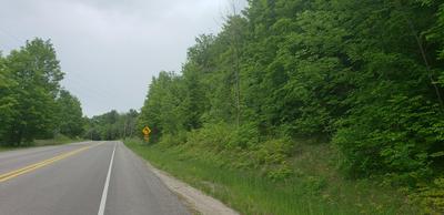 E GALLIVAN ROAD, Cedar, MI 49621 - Photo 1
