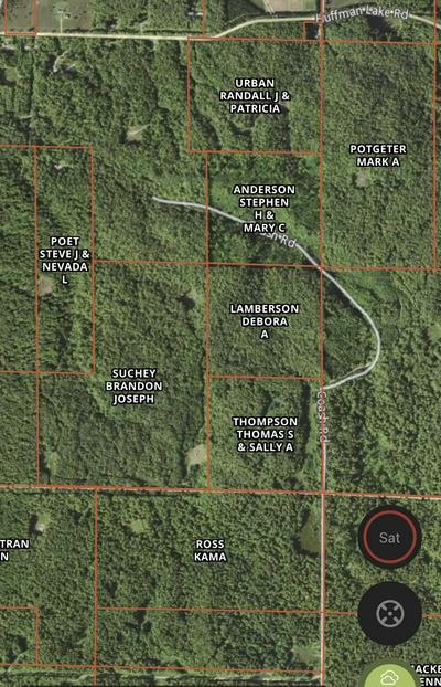 HUFFMAN LAKE ROAD, Vanderbilt, MI 49795 - Photo 2