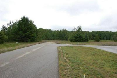 6450 AIRPORT CROSSING RD # 5, PELLSTON, MI 49769 - Photo 2