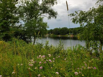 NORTH LAKE ROAD, Glennie, MI 48737 - Photo 1