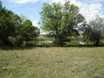 0 RIVER ROAD, GUERNSEY, WY 82214 - Photo 2