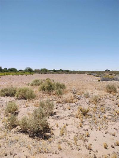 0000 COUNTY 16 ST, Somerton, AZ 85350 - Photo 2