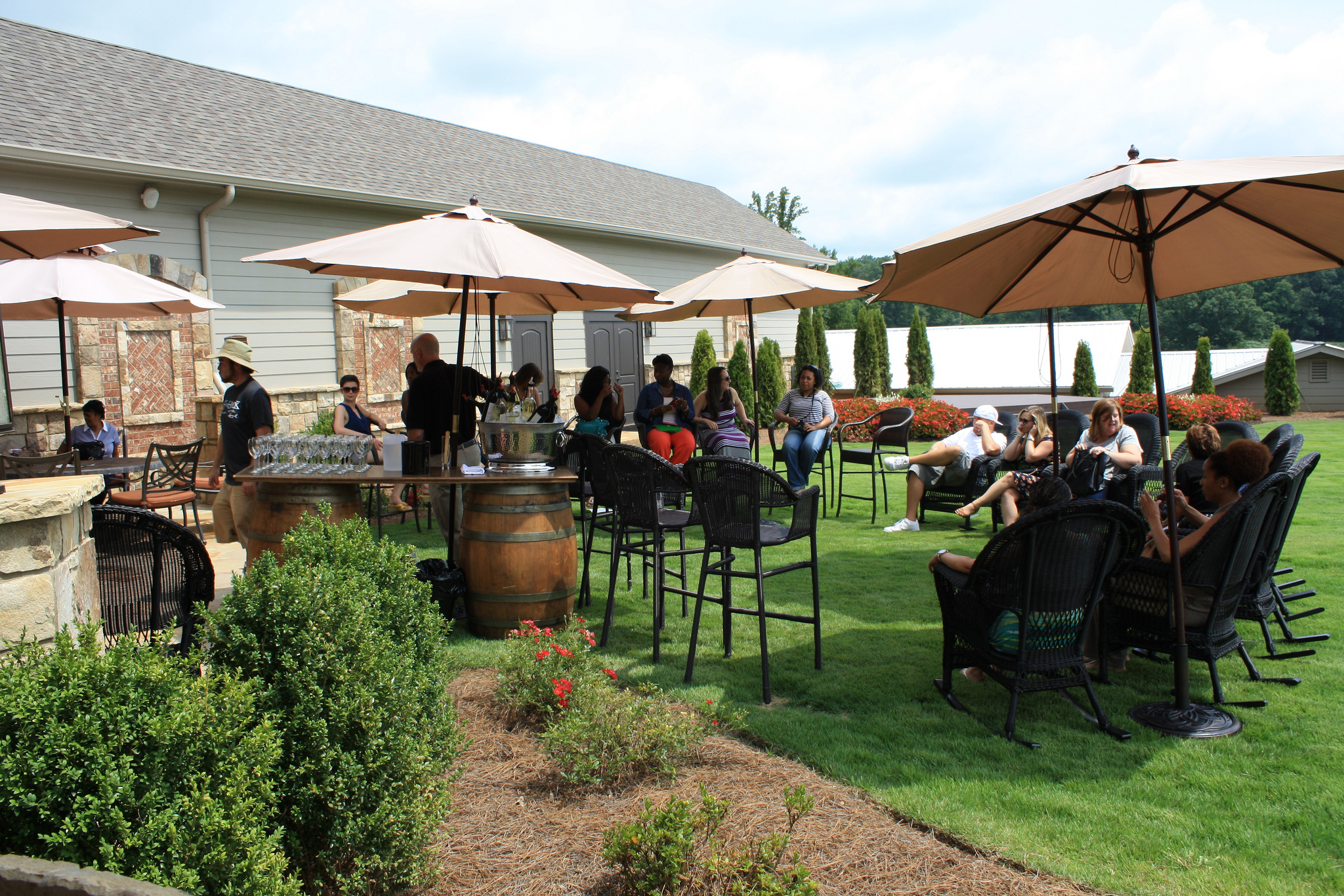 The Grape Escape Annual Spring Winery Tour 2019