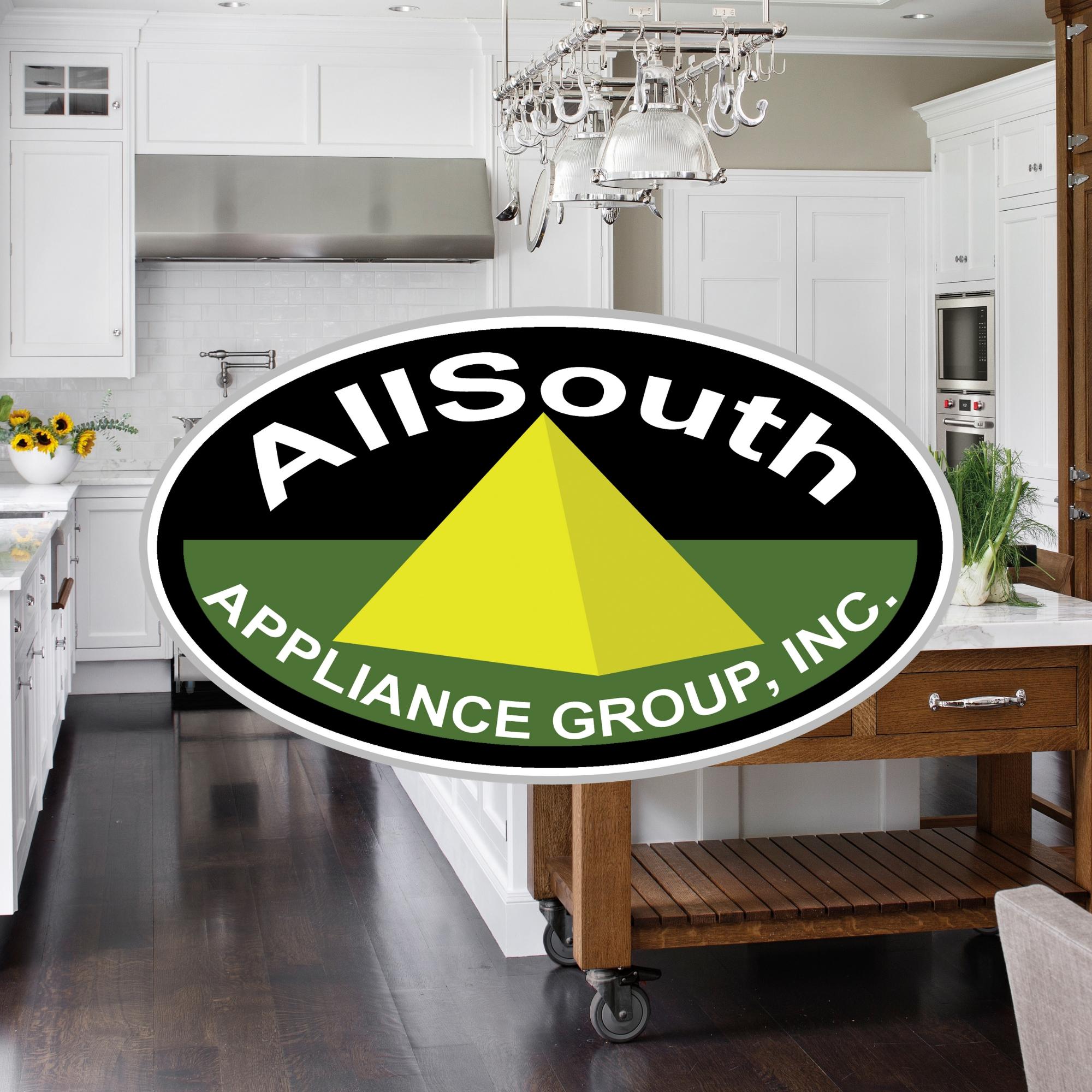 AllSouth Appliance Group | Leah McIntyre Business Logo