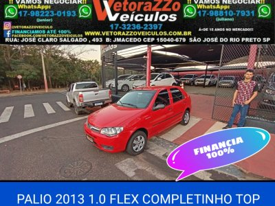 Veículo PALIO 2013 1.0 MPI FIRE ECONOMY 8V FLEX 4P MANUAL