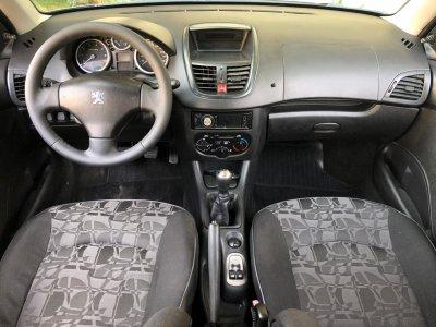 Veículo 207 2010 1.4 XR 8V FLEX 4P MANUAL