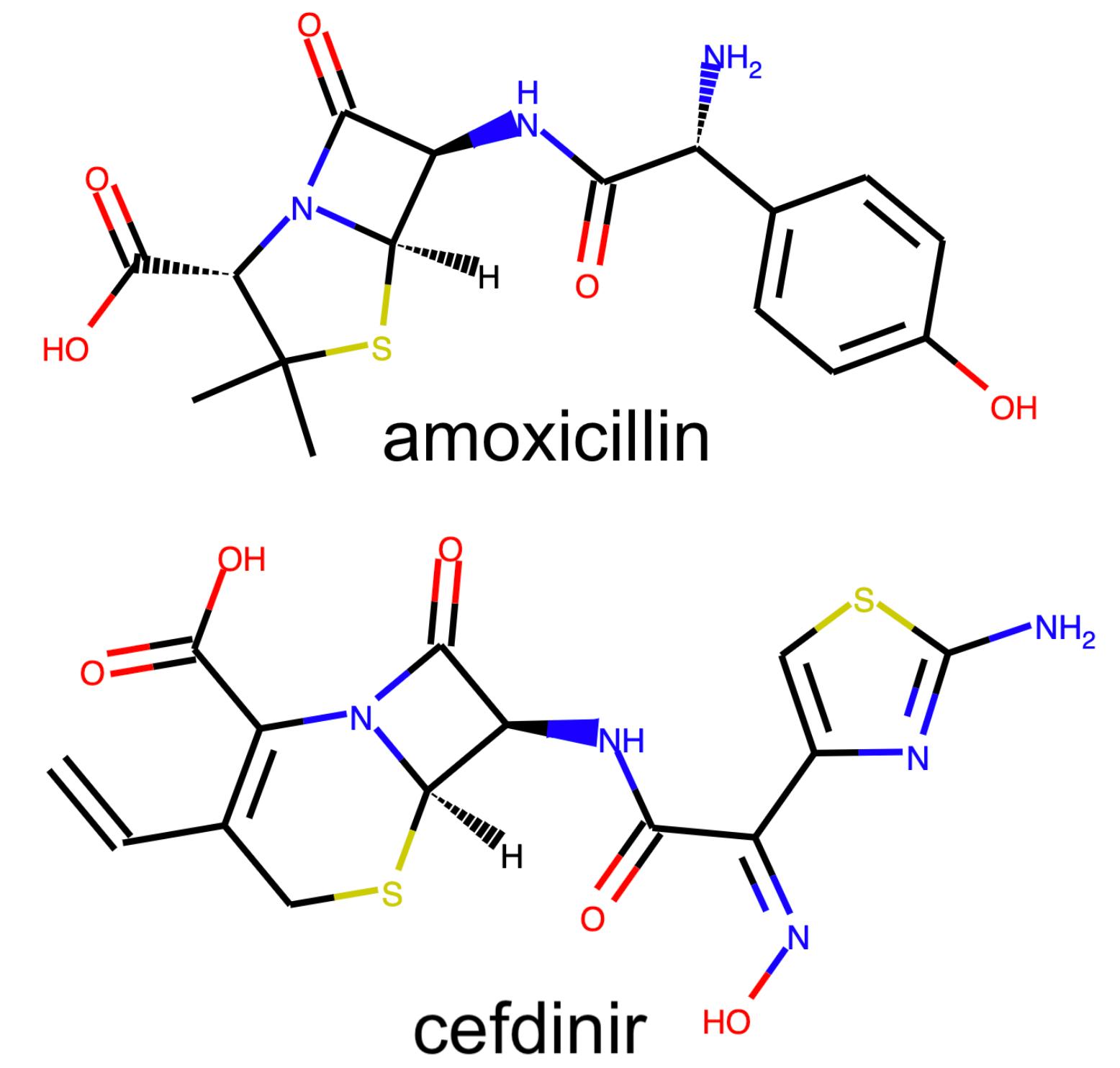 β-lactam examples
