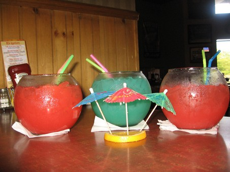 The fish bowl for Fish bowls drink