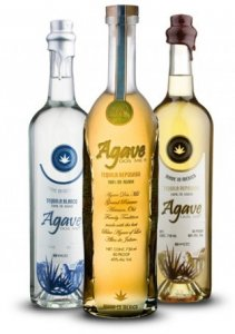 Agave Dos Mil Tequila Grand Reserve