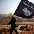 Why the internet is putting rubber ducks on heads of Isil fighters  - Telegraph