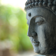 Three Fundamental Activities of Mindfulness