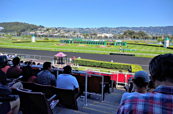 My once-a-year day at the races netted $21.50 in profits! (I always win.)