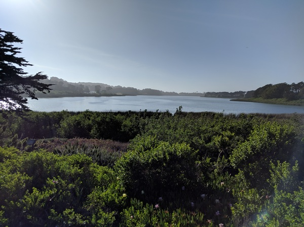 Lake Merced (as usual), all the time.