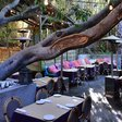 Best Restaurants & Places to Eat Outdoors in Los Angeles | Thrillist