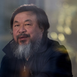 Ai Weiwei Is Back in the US After Eight Years