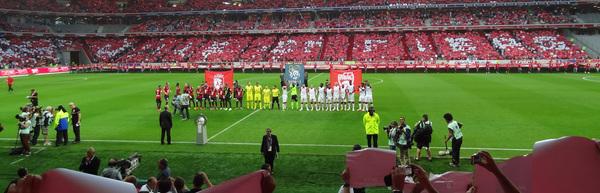 Ce changement a nécessité une énorme mobilisation de moyens pour que la nouvelle pelouse supporte le huitième de finale Allemagne - Slovaquie.