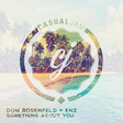 Dom Rosenfeld & ENZ - Something About You