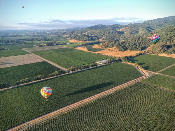 High up in the sky. Sonoma, CA.