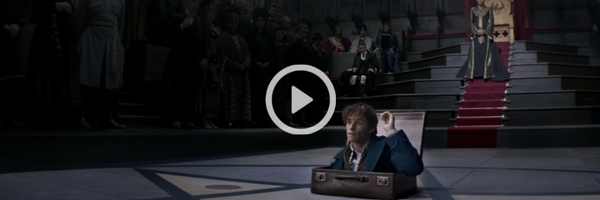 Fantastic Beasts and Where to Find Them   Final Trailer