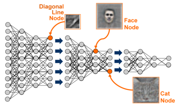 Deep Neural Network Architecture