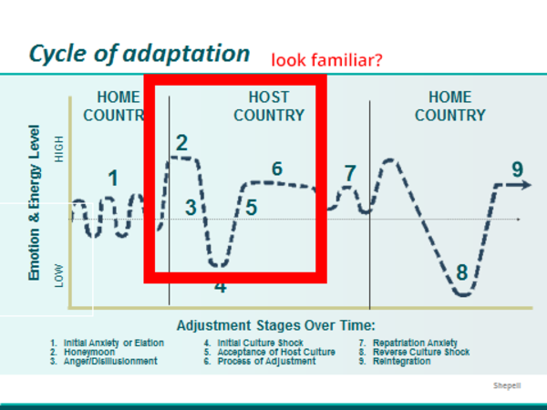 2. Foreign Service Adaptation Life Cycle