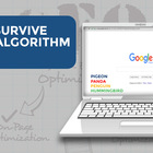 How to Survive Google Algorithm Updates | Digital Search Group