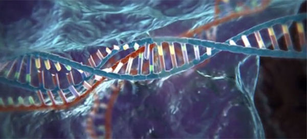 Models of CRISPR, a gene-editing technology found in ancient bacteria.