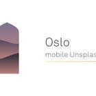 Oslo: An anatomy of Oslo