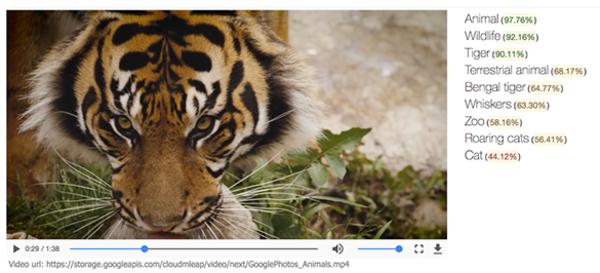 Google unveils Cloud Video Intelligence API