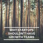 Why startups shouldn't have growth teams