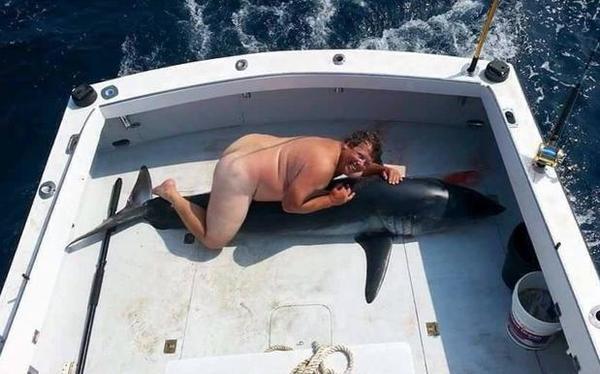 Poor shark 😞