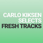🔊 FRESH TRACKS // Carlo Kiksen on Spotify