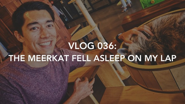 Click to watch the latest Vlog of my Seoulite adventures!