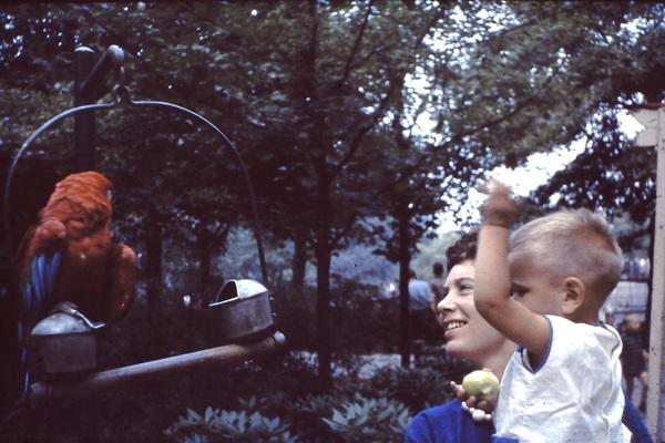 Diergaarde Blijdorp, 1964
