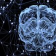 Why Your Brain Prioritizes Instant Gratification Over Long-Term Goals, According to Science   Inc.com